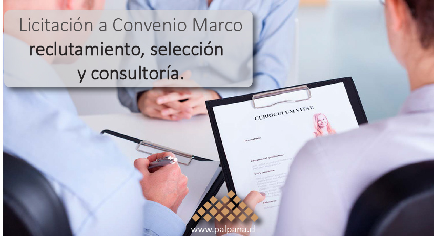 Oportunidad para Head Hunter y Consultoras en RRHH
